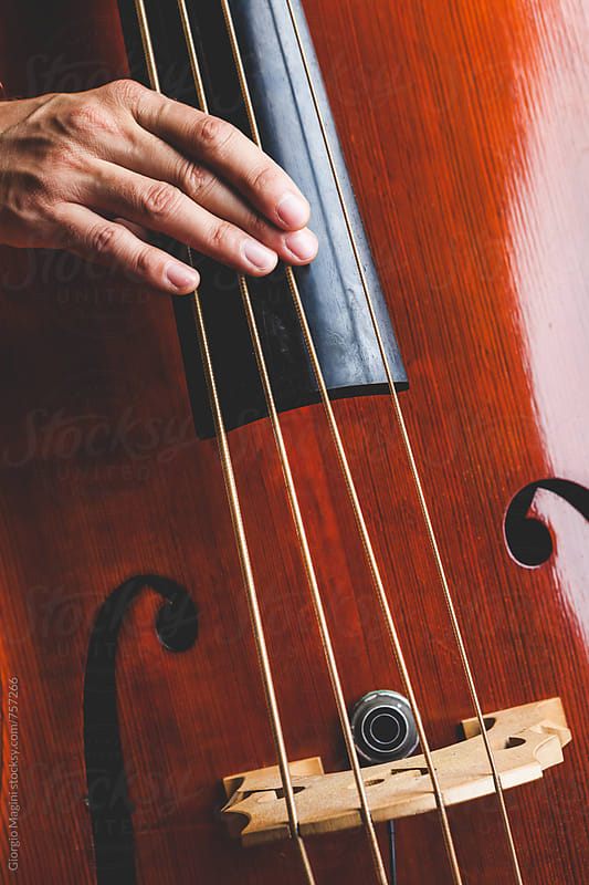 Professional Musician Playing a Double Bass by Giorgio Magini for Stocksy United