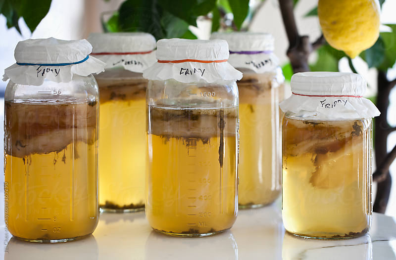 Homemade Kombucha Tea by Jill Chen for Stocksy United
