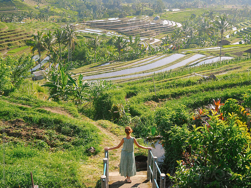 Woman Looking At a Beautiful Rice Paddy Terrace by Alexander Grabchilev for Stocksy United