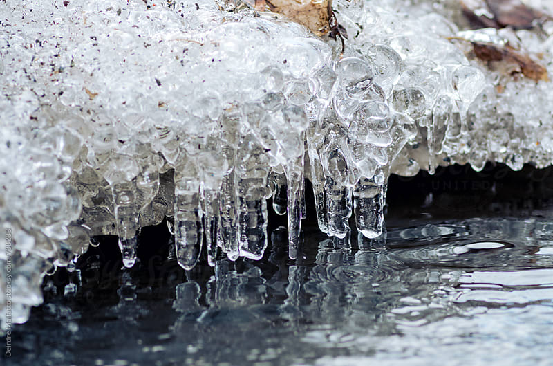ice melting into a stream by Deirdre Malfatto for Stocksy United