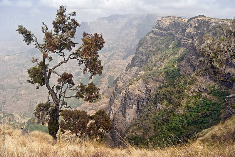 Simien Mountains by Anthon Jackson for Stocksy United