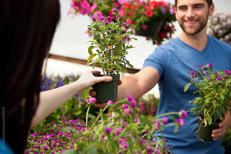 Nursery: Woman Taking Flower Plant From Boyfriend by Sean Locke for Stocksy United