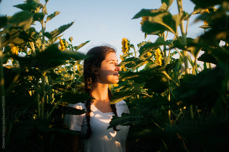 A woman standing in a sunflower field by Chelsea Victoria for Stocksy United