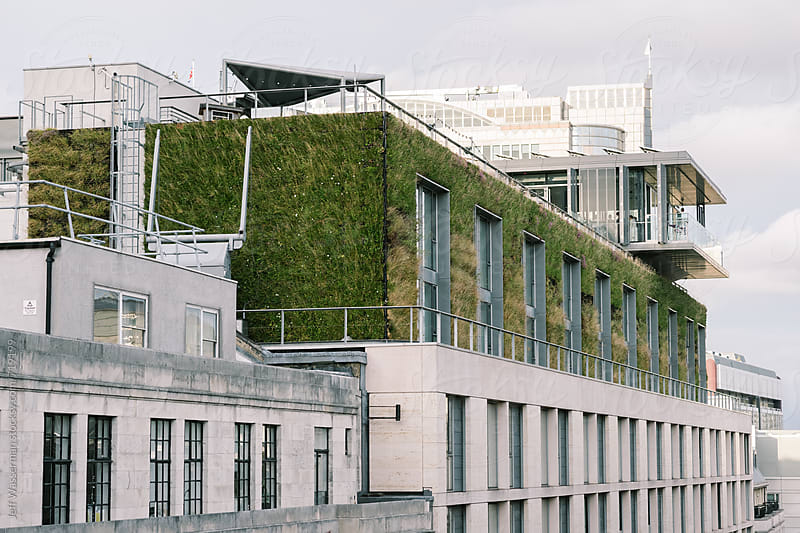 Green Building with Grass Walls by Jeff Wasserman for Stocksy United