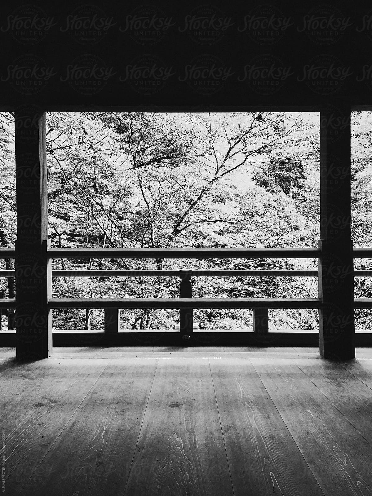 Stock photo minimalist japanese design and view on trees in black and white