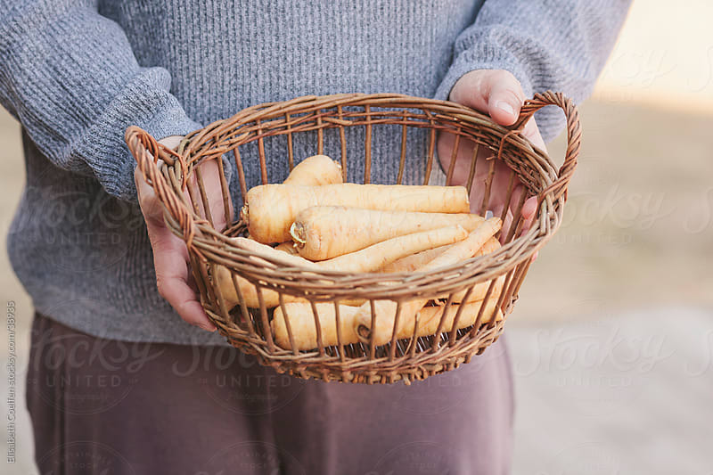 Man wearing a sweater holding a basket filled with parsnips outdoors by Elisabeth Coelfen for Stocksy United