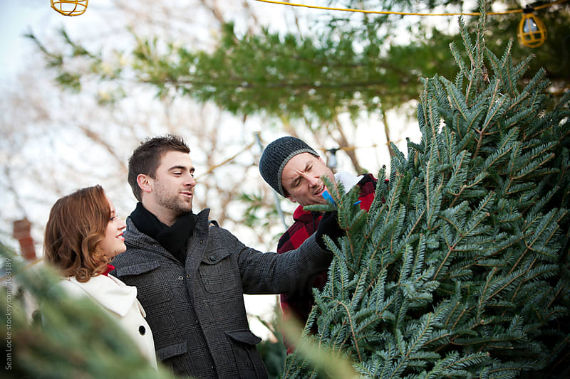 Tree Lot: Couple Discussing Christmas Tree with Employee by Sean Locke for Stocksy United