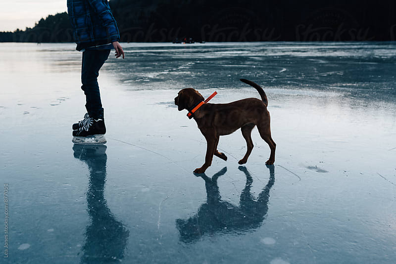 child skating with puppy following him  by Léa Jones for Stocksy United