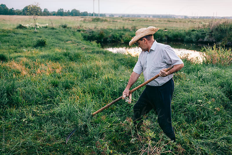 Mature farmer mows the grass with old scythe on meadow by Ilya for Stocksy United