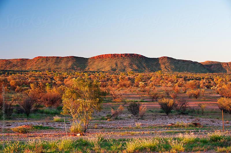 McDonnell Ranges, Near Alice Springs, Australia by Gary Radler Photography for Stocksy United