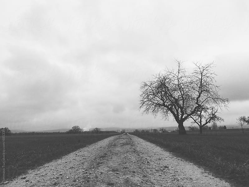 Landscape black and white by Tommaso Tuzj for Stocksy United