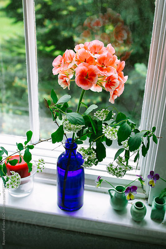 Fresh Flowers on the window sill by Raymond Forbes LLC for Stocksy United