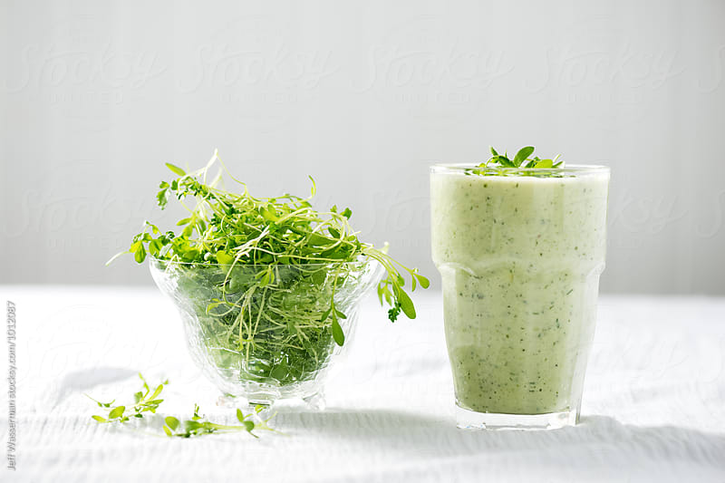 Cold Summer Cucumber Yogurt Soup with Micro-Greens by Studio Six for Stocksy United