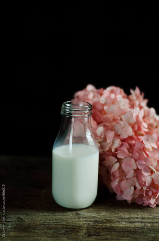 bottle of milk by Crissy Mitchell for Stocksy United