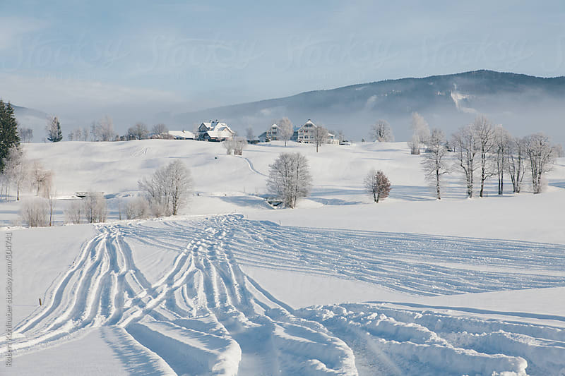 Skiing tracks in winter landscape in austria by Robert Kohlhuber for Stocksy United
