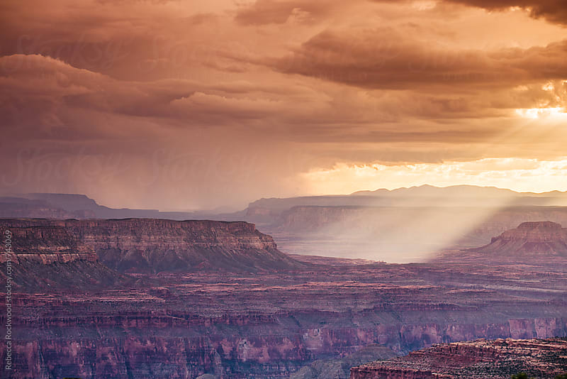 Grand Canyon by Rebecca Rockwood for Stocksy United