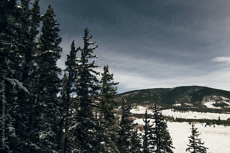 Winter landscape view  by Isaiah & Taylor Photography for Stocksy United