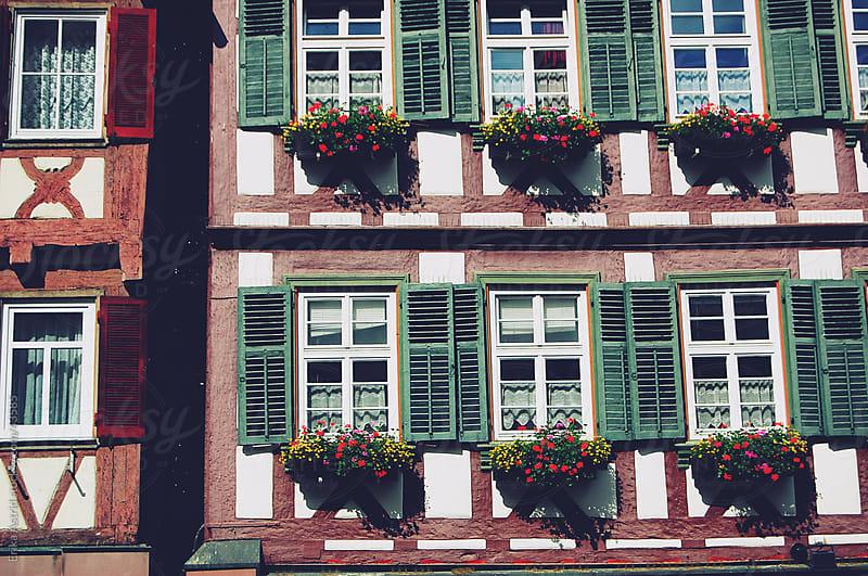 German windows by Erika Astrid for Stocksy United