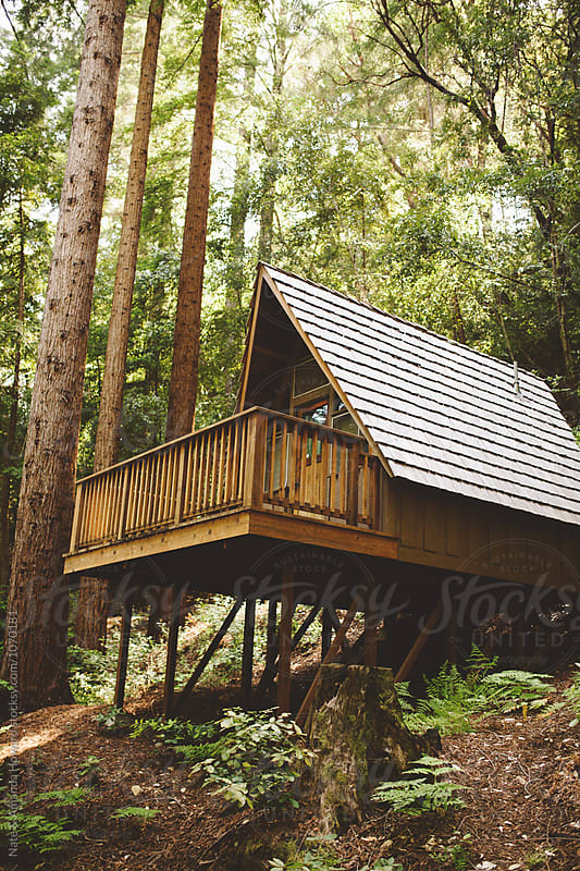 Cabin in the woods by Nate & Amanda Howard for Stocksy United