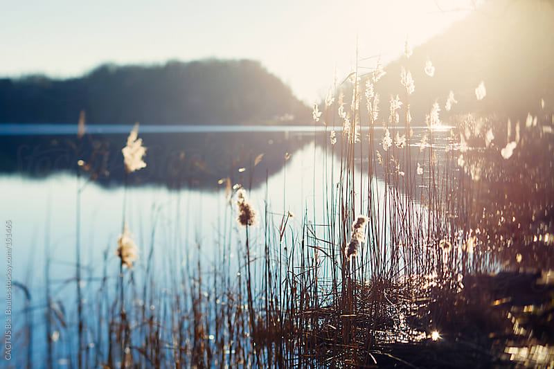 Lake landscape by CACTUS Blai Baules for Stocksy United