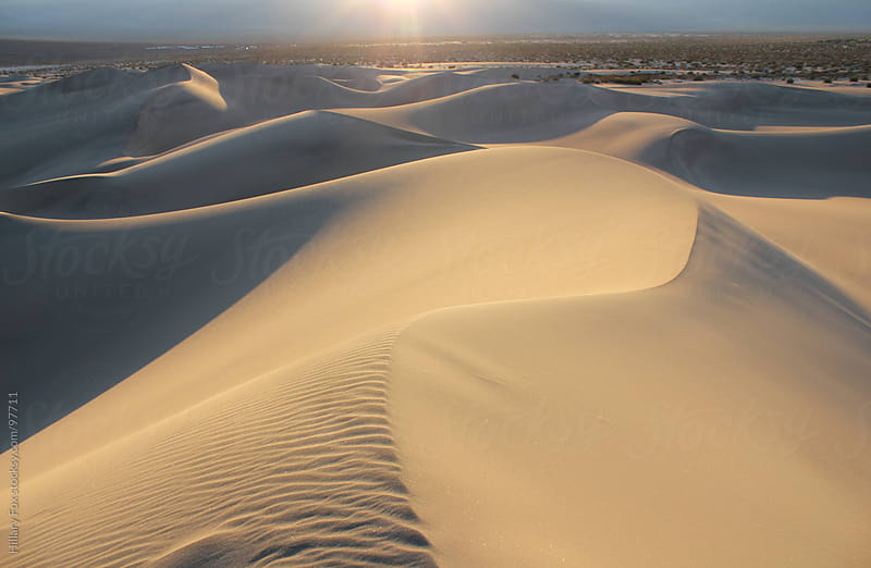 The Tallest Sand Dune in Death Valley, California by Hillary Fox for Stocksy United
