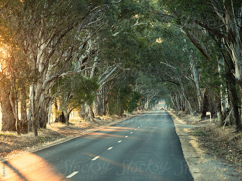Single Car travelling an Australian Country Road by Gary Radler Photography for Stocksy United
