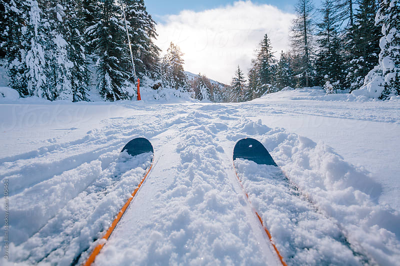 Skiing in powder snow by Davide Illini for Stocksy United