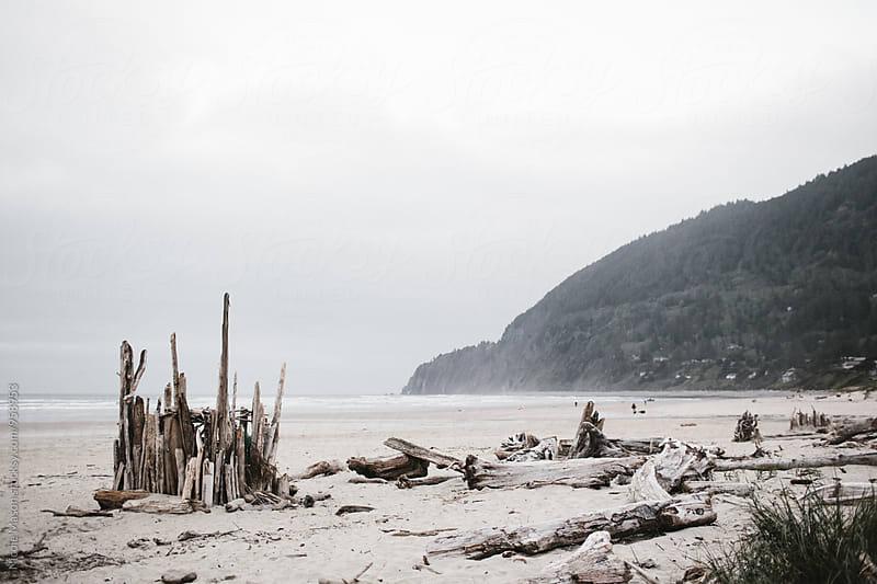 fort made of driftwood on oregon coast by Nicole Mason for Stocksy United