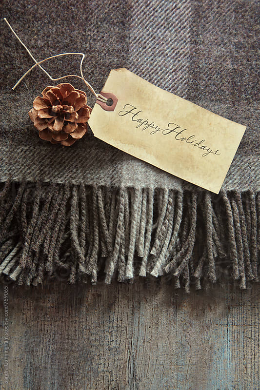 Plaid blanket with gift card and pine cone by Sandra Cunningham for Stocksy United
