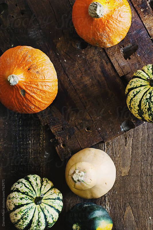 Pumpkins on wooden background, seen from overhead view. by Darren Muir for Stocksy United