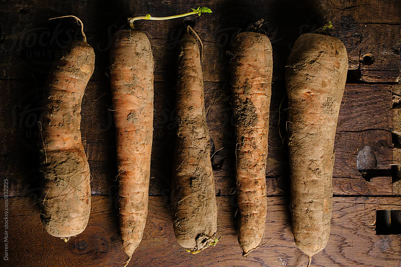 Muddy carrots on a wood background. by Darren Muir for Stocksy United