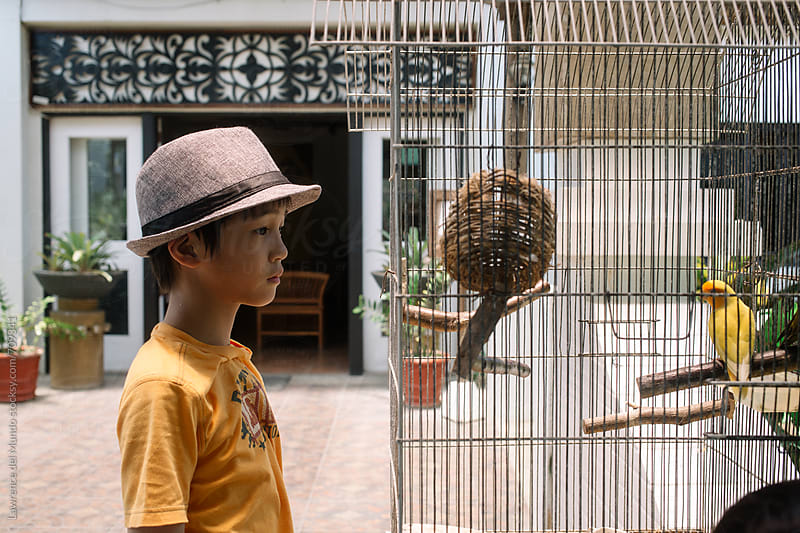 Young boy with hat looking at a pair of African Lovebirds in a cage with pity by Lawrence del Mundo for Stocksy United