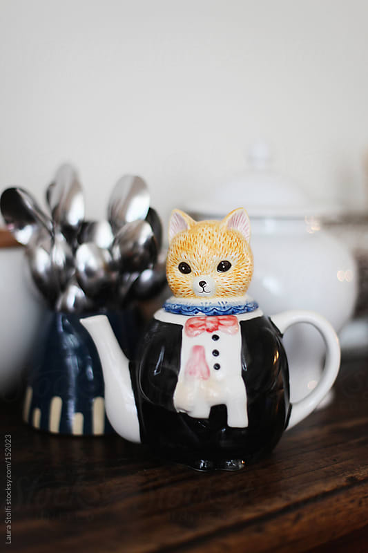 Teapot shaped in a frac dress wearing cat by Laura Stolfi for Stocksy United