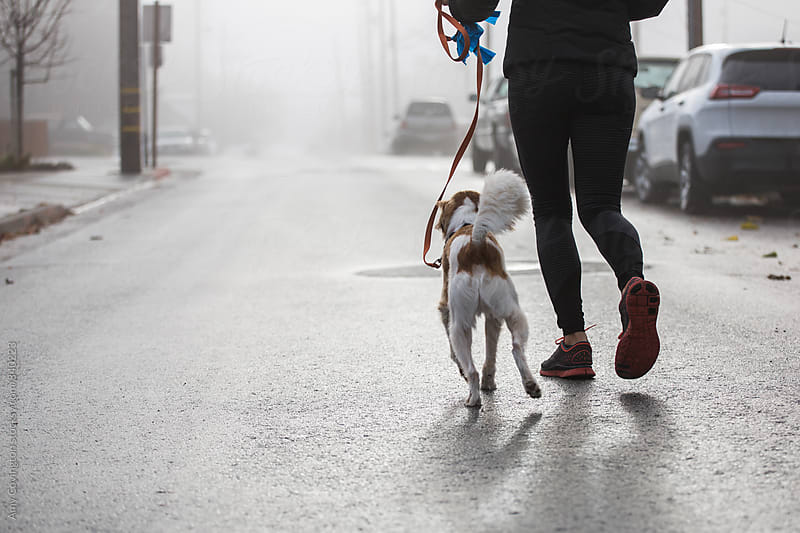 Young woman going for a jog with her dog by Amy Covington for Stocksy United
