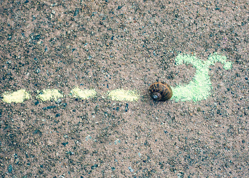 Empty snail shell with a chalk body and snail trail drawn in by Carolyn Lagattuta for Stocksy United