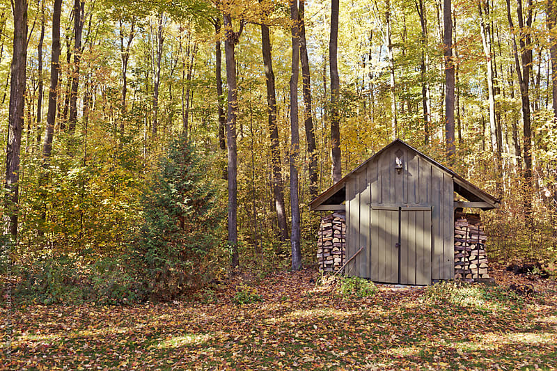 Shed in Rural Canadian Backyard by Joselito Briones for Stocksy United