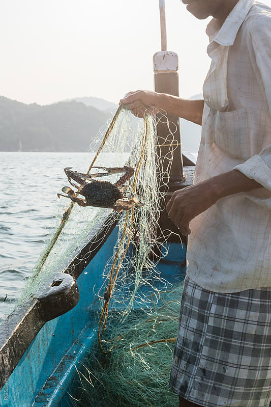 fisherman gathering the fishing net with a crab trapped inside by RG&B Images for Stocksy United