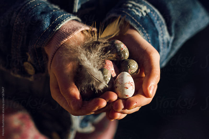 A child's hands holding eggs and feathers by Helen Rushbrook for Stocksy United