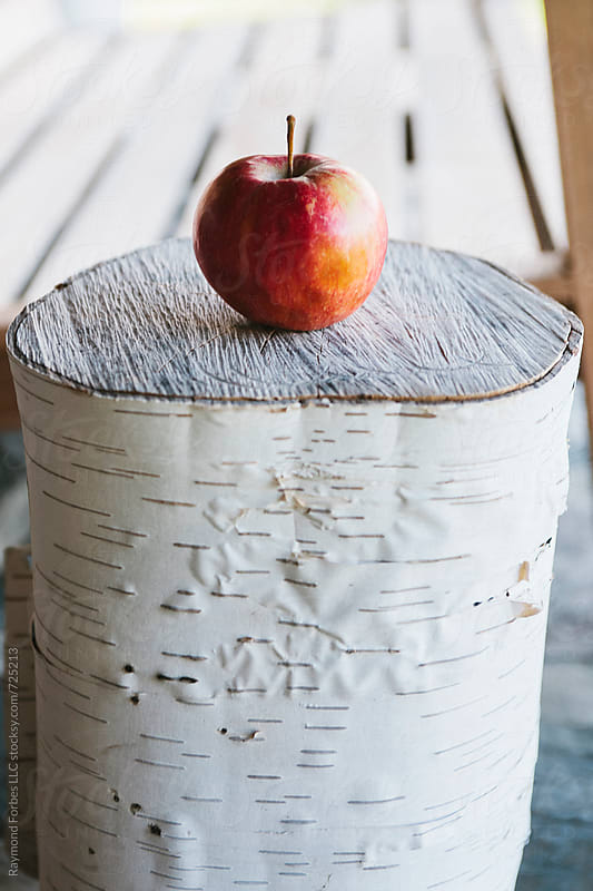 Apple on Birch Blocl by Raymond Forbes LLC for Stocksy United