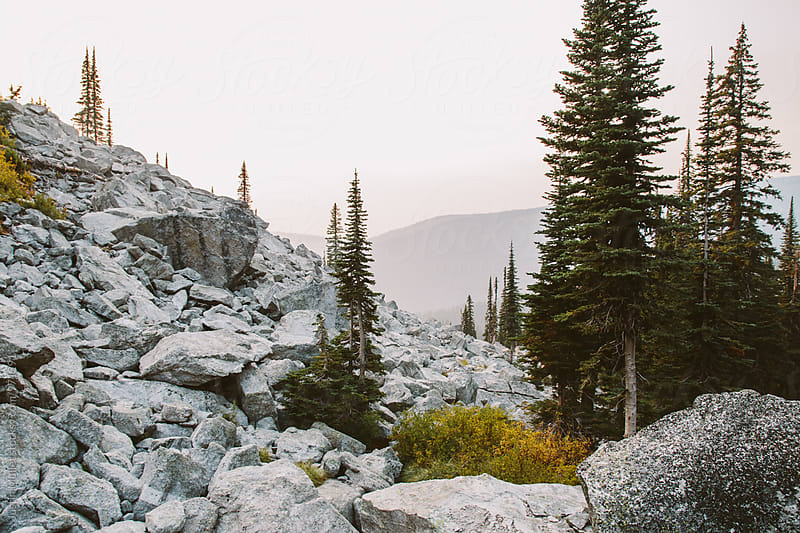 Boulder Field in the Selkirk Mountain Range by Justin Mullet for Stocksy United