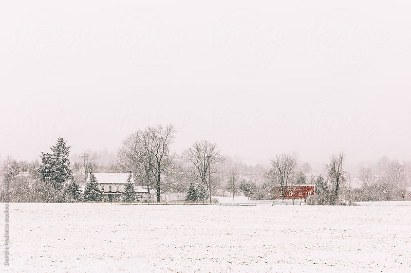 Old-fashioned farm with red barn in the snow by Deirdre Malfatto for Stocksy United