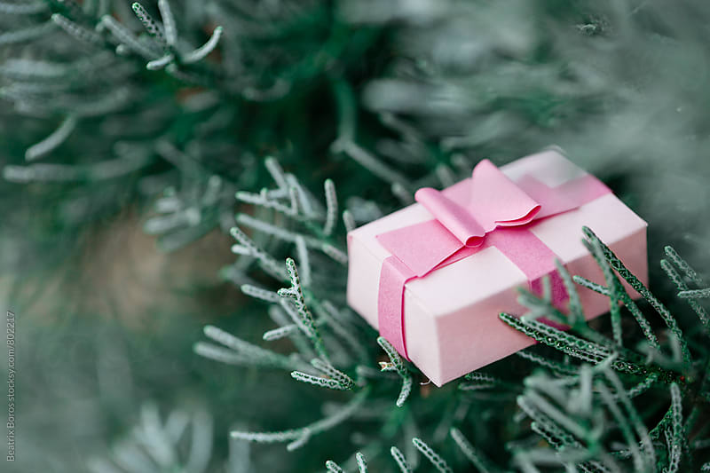 Little pink gift box decoration with ribbon on a Christmas tree by Beatrix Boros for Stocksy United