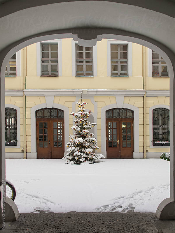 Christmas tree standing in a snowing courtyard by Melanie Kintz for Stocksy United