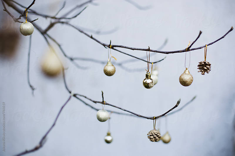 Christmas decoration hanging on a branch by Jovana Rikalo for Stocksy United