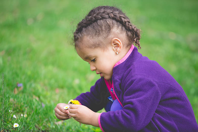 Portrait of a pretty young girl with braided hair picking dandelion flowers. by anya brewley schultheiss for Stocksy United