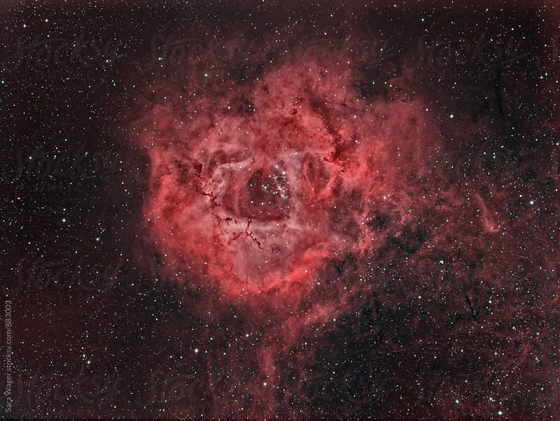 The Rosette nebula by Sara Wager for Stocksy United