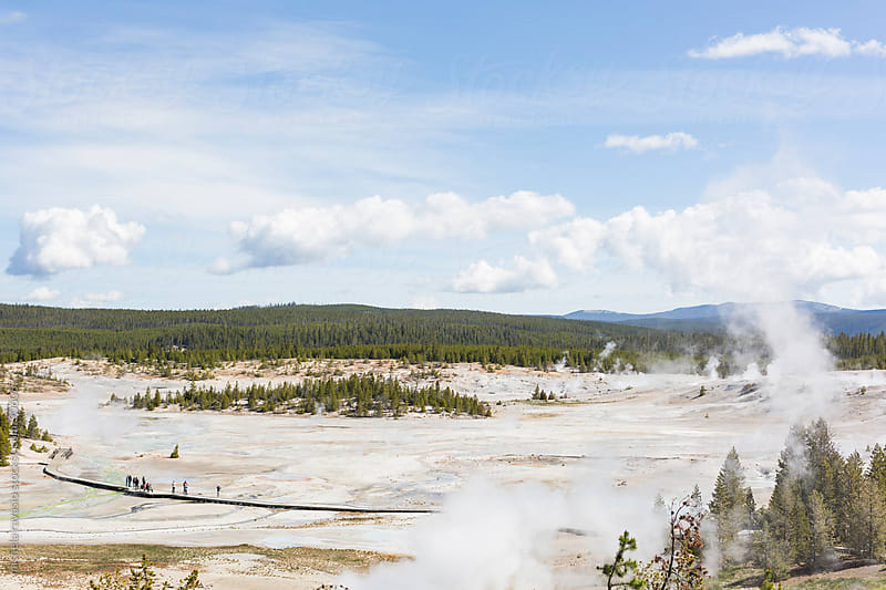 Landscape of Norris Geyser Basin in the Yellowstone National Park by michela ravasio for Stocksy United