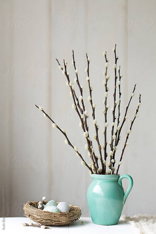Vase of pussy willow twigs by Ruth Black for Stocksy United
