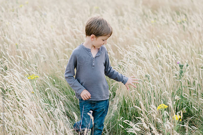 Boy exploring a field by Rebecca Spencer for Stocksy United