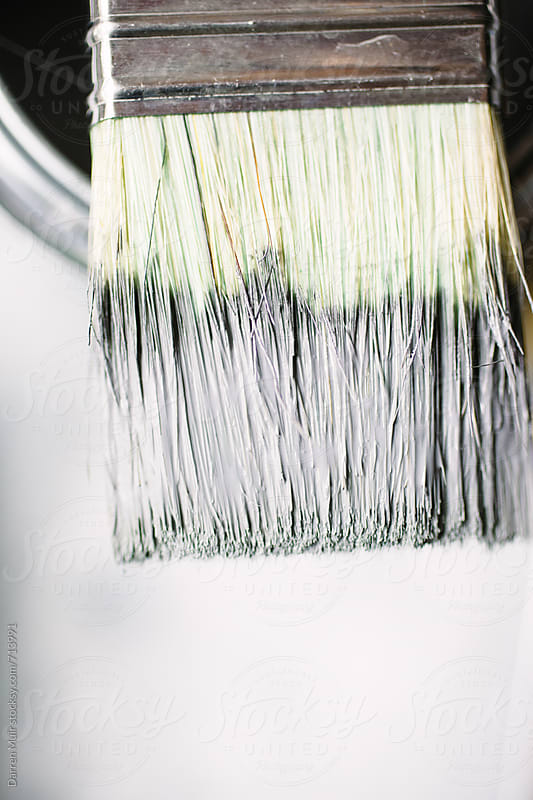 Paint brush with paint. by Darren Muir for Stocksy United